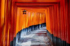 Learning Pathways Image